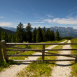 Wooden Gate — Foto de Stock