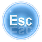 Esc icon ice, isolated on white background — Stock Photo