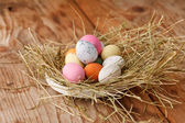 Easter eggs in a bird's nest — Photo