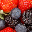 Fresh berries — Stock Photo #6961457