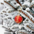Christmas ball on the fir — 图库照片