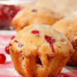 Cranberry muffins - Stock Photo