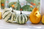 Colorful pumpkins collection on the windowsill — Stock Photo