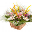 Beautiful flowers in a basket — ストック写真