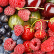 Royalty-Free Stock Photo: Different kinds of berries