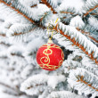 Christmas ball on the fir — Stockfoto