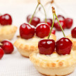 Tart with cherries — 图库照片