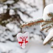 Heart on the branch of fir - Stock Photo