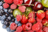 Different kinds of berries — Stock Photo