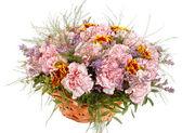 ładne kwiaty w koszyku — Zdjęcie stockowe