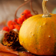 Harvested pumpkins with fall leaves — Stock Photo #6981215