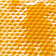 Fresh honey in comb — Stock Photo #6982021