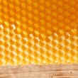 Fresh honey in comb — Stock Photo #6984588