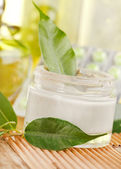 Bottle of organic cream — Stock Photo