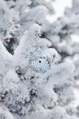 Christmas ball on the fir — Stock Photo