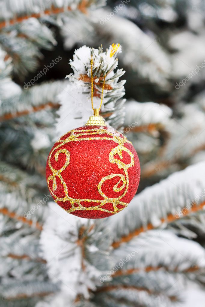 Christmas ball on the fir   Stock Photo #6983318