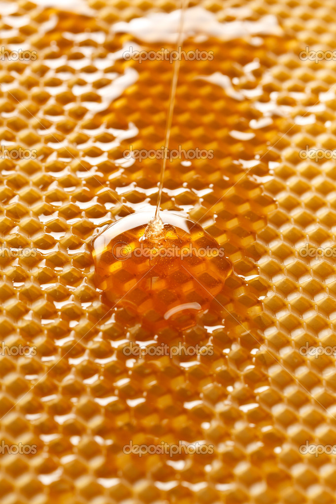 Fresh honey in comb  — Stock Photo #6984578