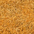 Hay — Stock Photo #7890532