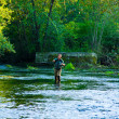 Stock Photo: Fly FishermFishing