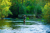 Fly Fisherman Fishing — Foto Stock