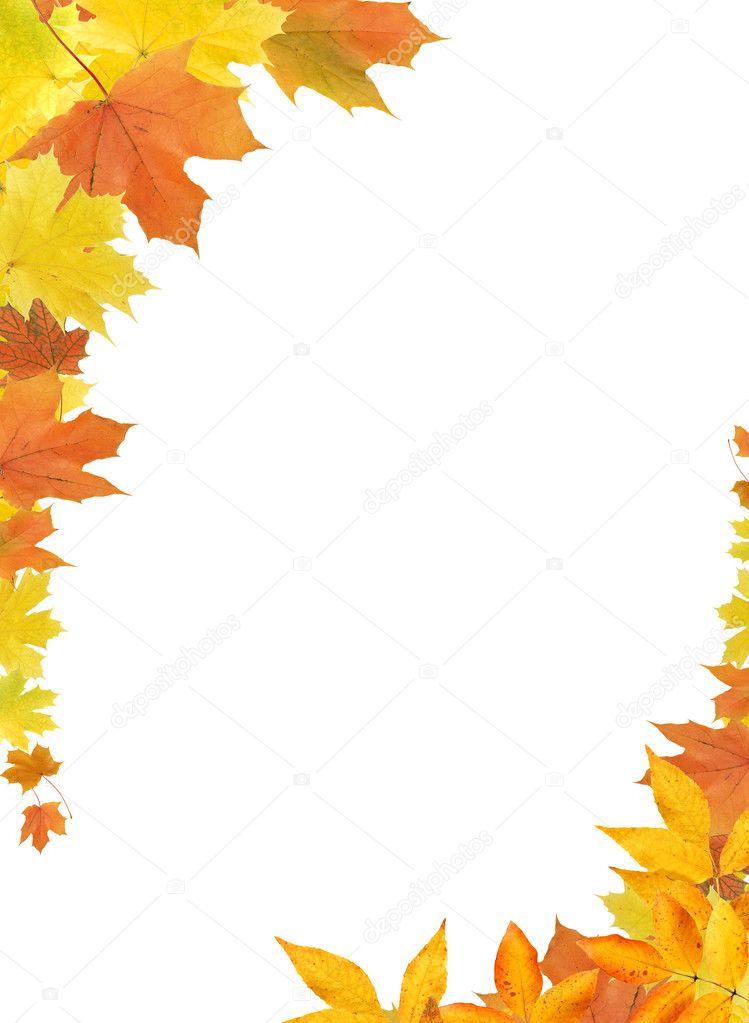 thanksgiving leaf clip art