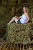 Attractive girl in the hay. rural lifestyle — Stock Photo