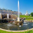 Grand Cascade of fountains at Peterhof — Stock Photo #6985566