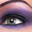 Smokey make-up of female eye - Stock Photo