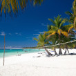 Постер, плакат: Volleyball net on caribbean beach