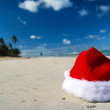 Tropical christmas — Stock Photo #7623797