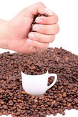 Coffee beans in hand above cup with coffee beans — Stock Photo