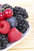 Different berries on plate, closeup — Stock Photo