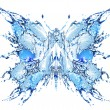Stock Photo: Water butterfly