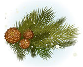 Pine branch with cone — Stockvector