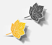 Autumn sticker realistic object shadow leaf set — Stock Vector