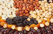 Dried fruits food background with hazel, cashew nuts, prunes, fi — Stock Photo