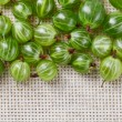 Many gooseberry fruits on gray linen table cloth with copy space — Stock Photo