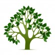Royalty-Free Stock Vector Image: Tree