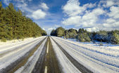 Winter road to wood, Belarus — Stock Photo