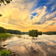 Wood lake in summer day — Stock Photo