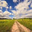 Rural road to summer day, Belarus — Stockfoto