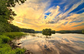 Wood lake in summer day — Stock fotografie