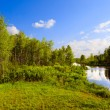 The wood river in a summer sunny day - Stock Photo