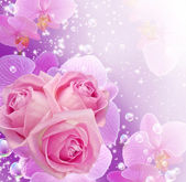 Orchid, roses and bubbles — Stock Photo