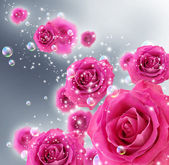 Roses and bubbles — Foto Stock