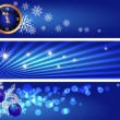 Set Christmas banners — Stock Vector
