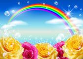 Roses and rainbow — Stock Photo