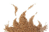 Flame wood pellet — Stock Photo