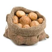 Raw Harvest potatoes in burlap sack — Stock Photo