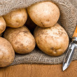 Potatoes in burlap sack with a rustic knife to clean the vegetab — Stock Photo #7064344